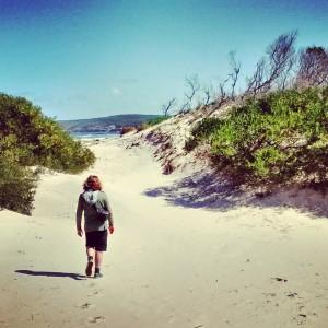 The Tarkine Coast, TAS